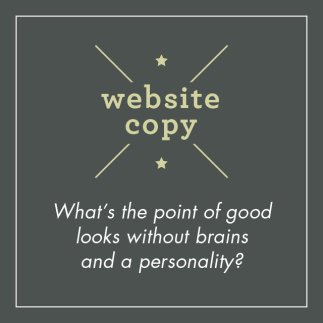 Website Copy Graphic Panel